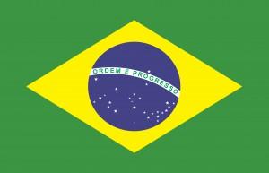 Braxil Flag
