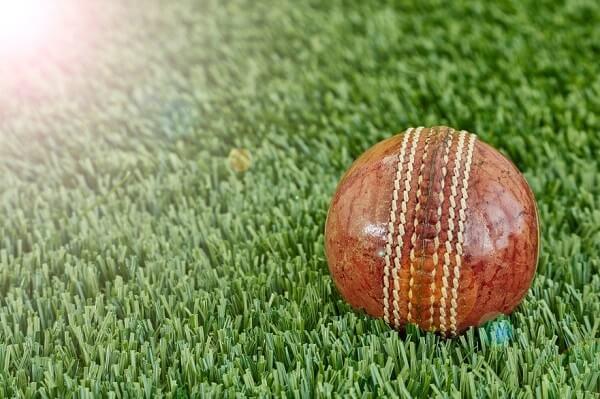 Cricket-Ball-Grass