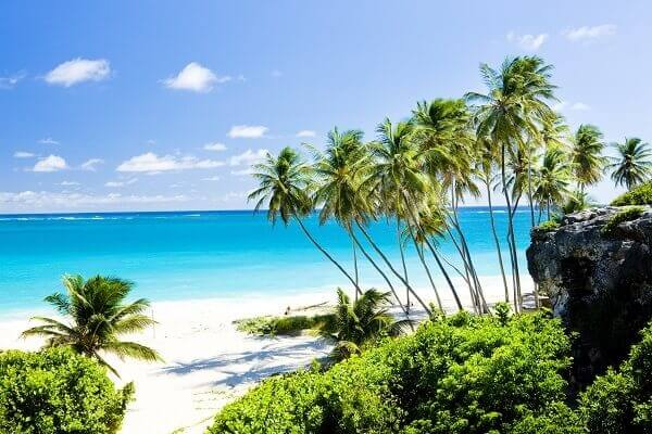 Destination-Barbados-Beach-Trees
