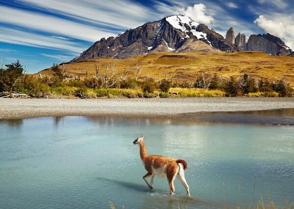Destination-Patagonia