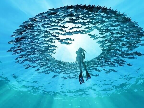 Eye-of-the-Ocean